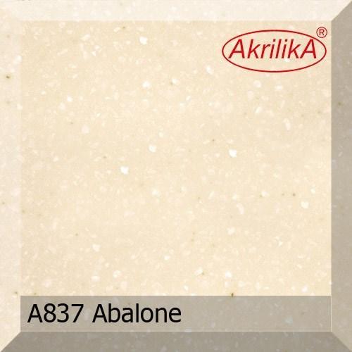A837 Abalone