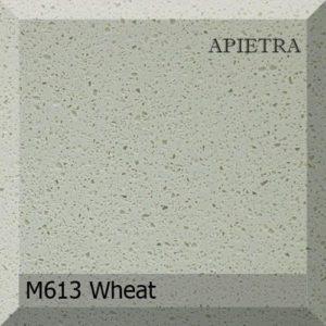 M613 Wheat