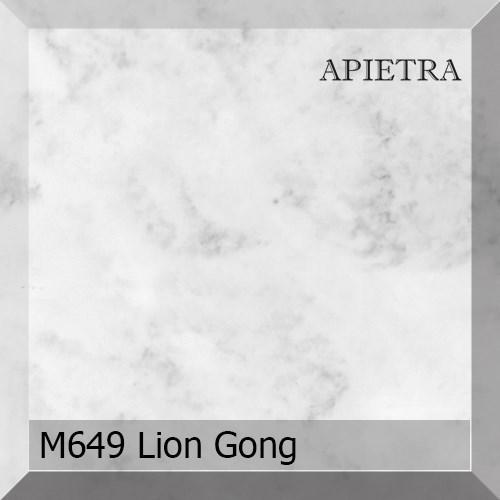 M649 Lion Gong