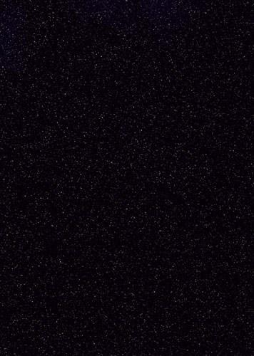 G047 Black Bird