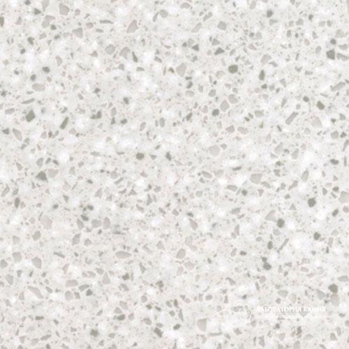 Заказать Silver Birch в Москве - Фото 1
